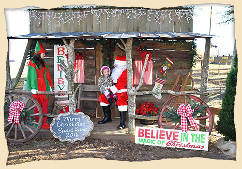 Join us for a family friendly Christmas Festival at Seward Farms this October!